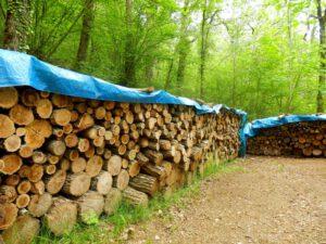 Blaue Abdeckplane für Holz
